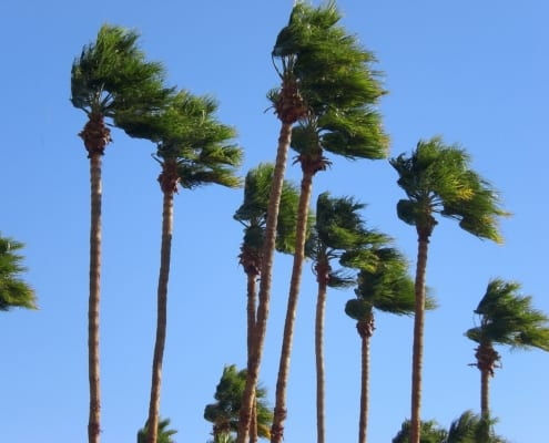 wind-mitigation-inspections