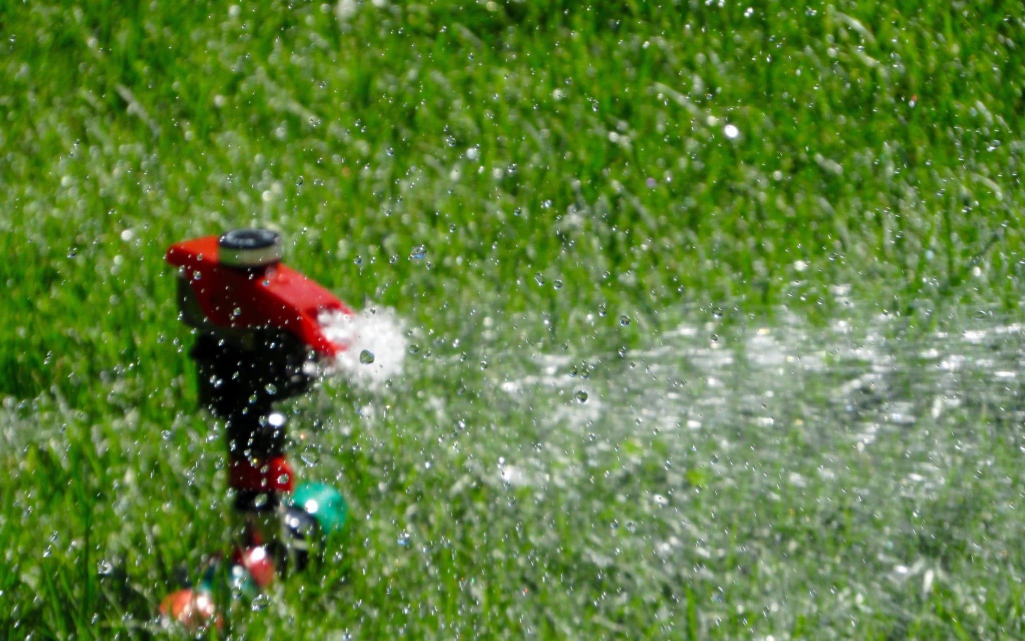 irrigation-inspection