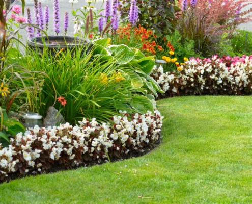 gardening-in-florida