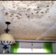 Ceiling Covered With Mold Ceiling Covered With Mold