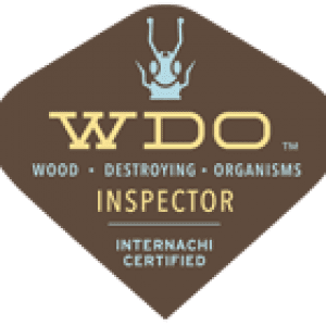 wood destroying organisms termite inspector internachi certified northbank home inspection vancouver wa